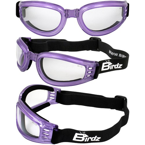 Cardinal Purple Foam Padded Goggles Clear Lenses