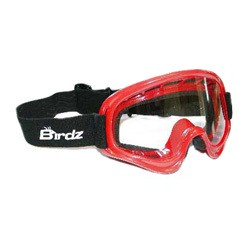 Red Motorcycle Motocross Goggles Clear Lenses