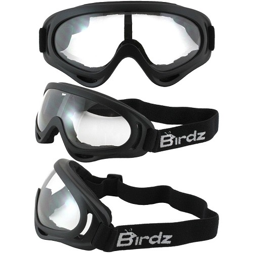 FlyCatcher Foam Padded Goggles Clear Lenses