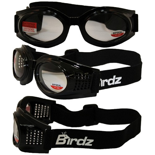 Bifocal Clear Motorcycle Goggles with Bifocals